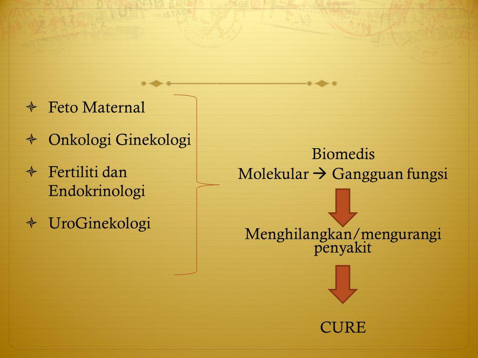  Feto Maternal  Onkologi Ginekologi  Fertiliti dan Endokrinologi  UroGinekologi Biomedis Molekular  Gangguan fungsi Menghilangkan/mengurangi peny