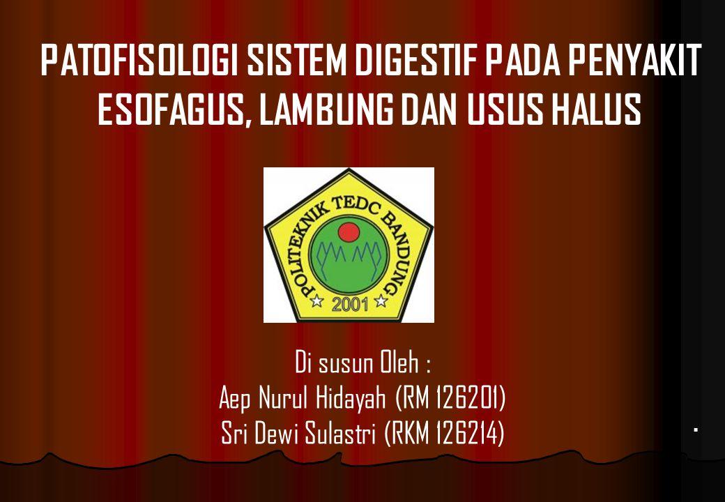 . PATOFISOLOGI SISTEM DIGESTIF PADA PENYAKIT ESOFAGUS, LAMBUNG DAN USUS HALUS Di susun Oleh : Aep Nurul Hidayah (RM 126201) Sri Dewi Sulastri (RKM 126