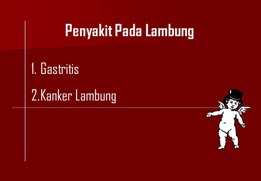Penyakit Pada Lambung 1.Gastritis 2.Kanker Lambung
