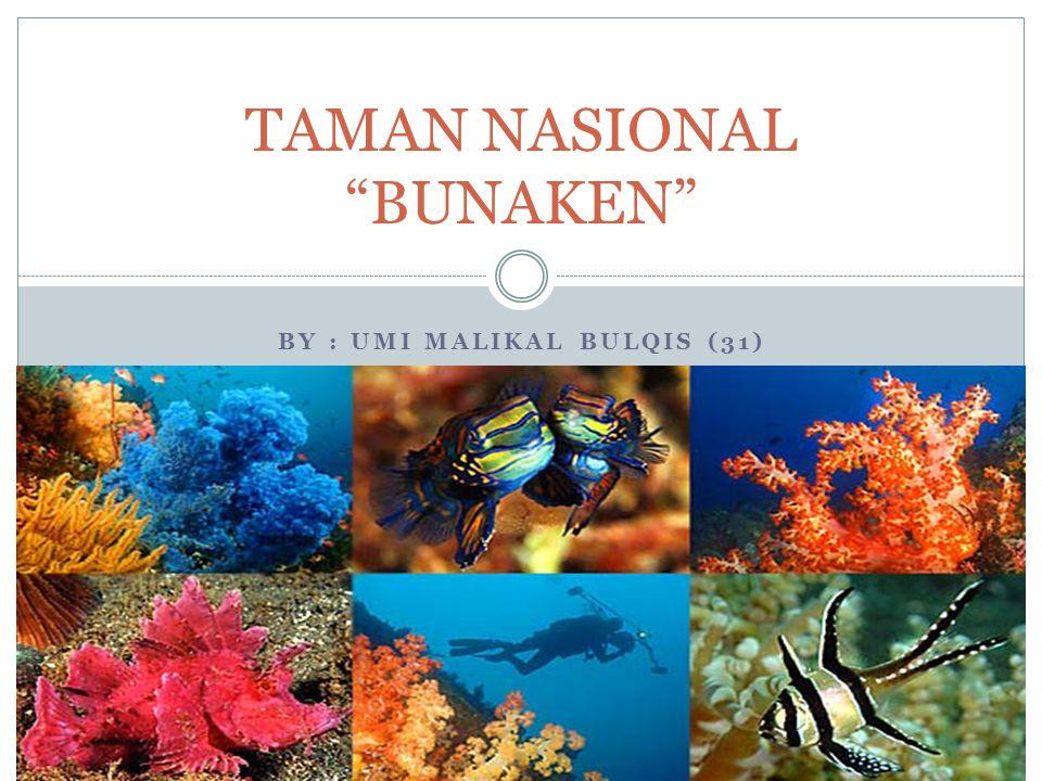 """BY : UMI MALIKAL BULQIS (31) TAMAN NASIONAL """"BUNAKEN"""""""