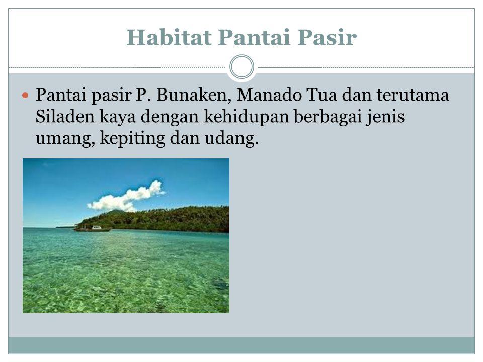 Habitat Pantai Pasir Pantai pasir P. Bunaken, Manado Tua dan terutama Siladen kaya dengan kehidupan berbagai jenis umang, kepiting dan udang.