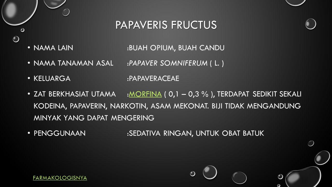 PAPAVERIS FRUCTUS NAMA LAIN:BUAH OPIUM, BUAH CANDU NAMA TANAMAN ASAL:PAPAVER SOMNIFERUM ( L.