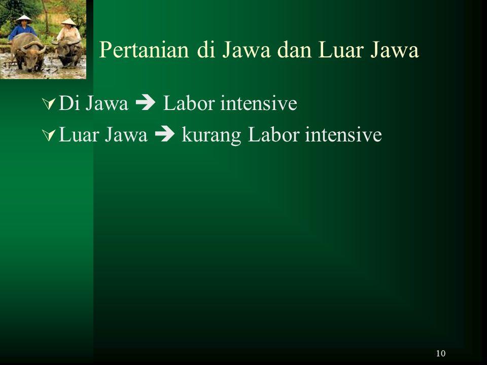 10 Pertanian di Jawa dan Luar Jawa  Di Jawa  Labor intensive  Luar Jawa  kurang Labor intensive