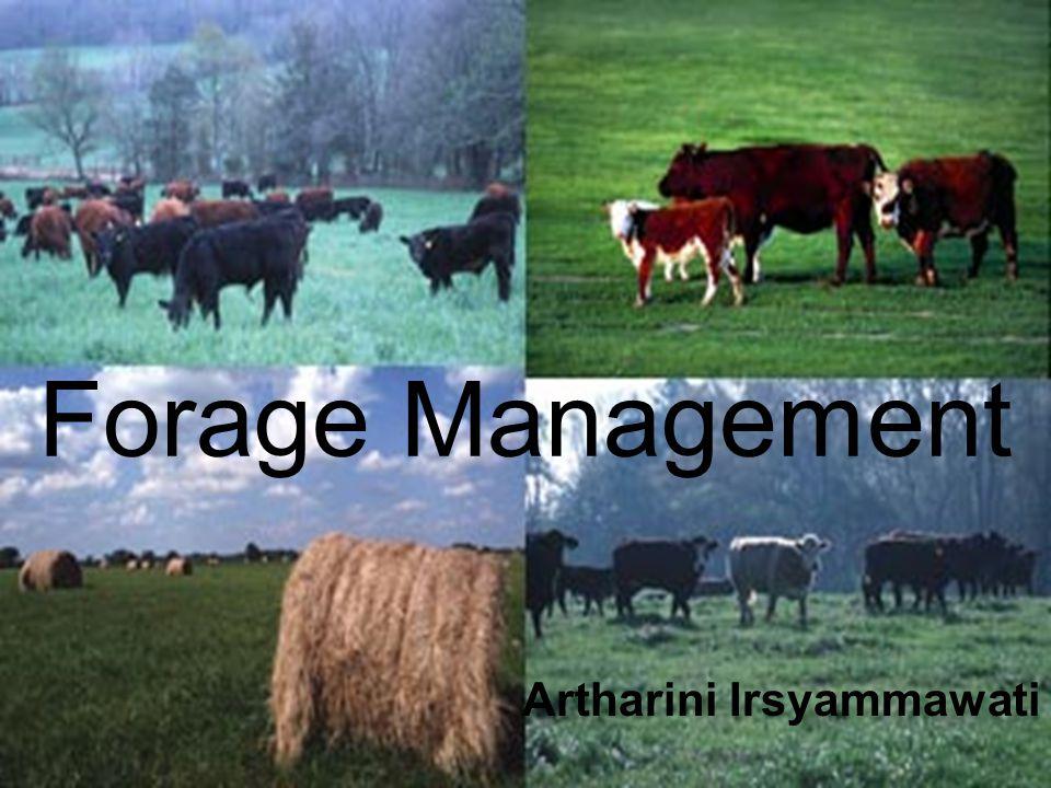 Forage Management Artharini Irsyammawati
