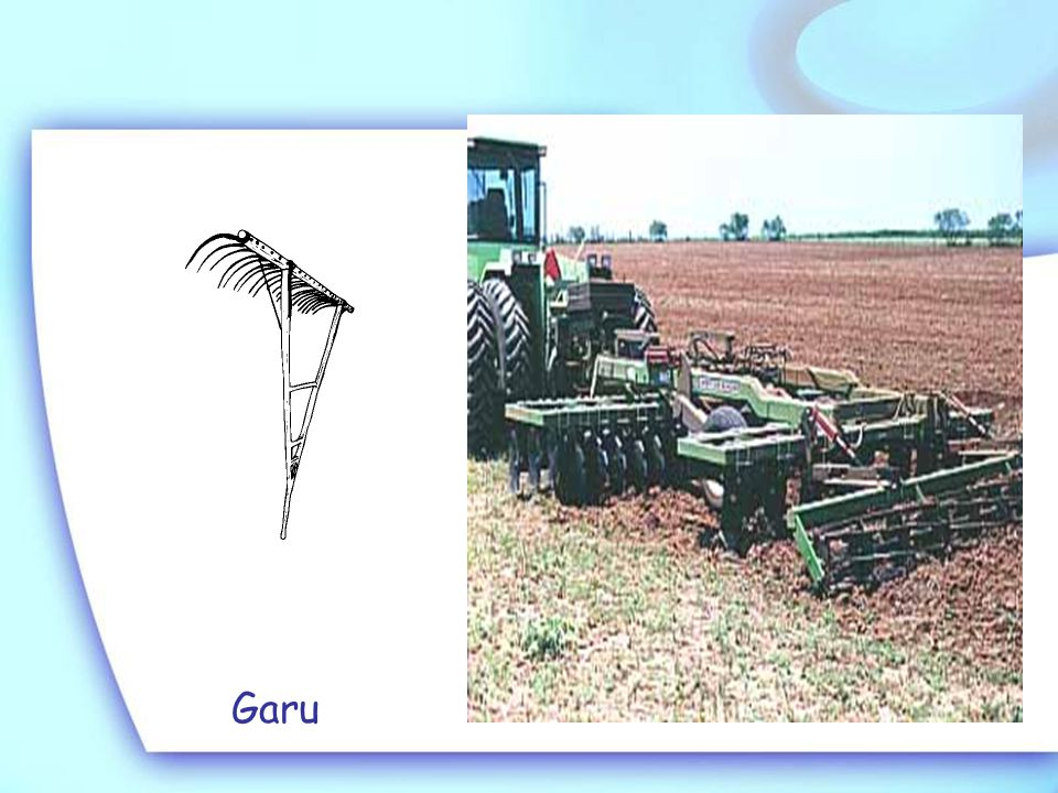 2. Pengolahan tanah tahap kedua :  Disebut juga penggaruan  Alat : garu  Tujuan : a.Menggemburkan/menghancurkan gumpalan tanah b.Membersihkan sisa