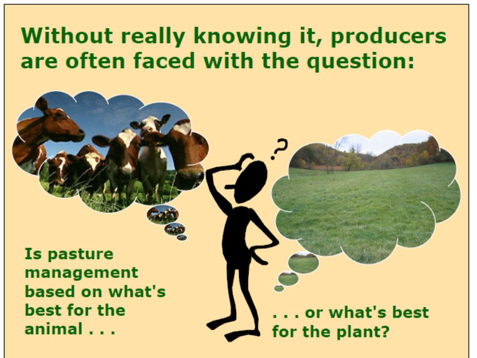 In ridge and furrow system, ridges are made using either tractor drawn or animal drawn ridge ploughs.