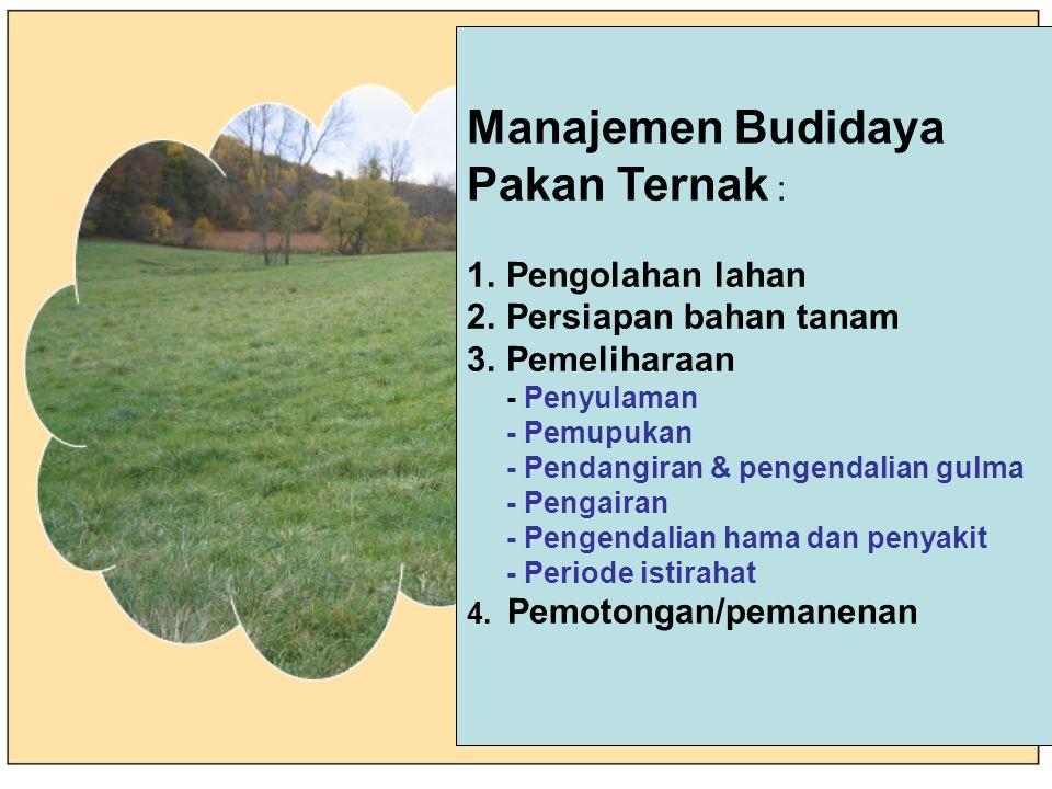 PENANAMAN BENIH  Kelembaban tanah dibutuhkan untuk keberhasilan perkecambahan  Benih berukuran kecil perlu dicampur carrier  Kedalaman tanam benih kecil 1-2 cm (rumput) dan benih lebih besar (rumput dan leguminosa) 3-7 cm