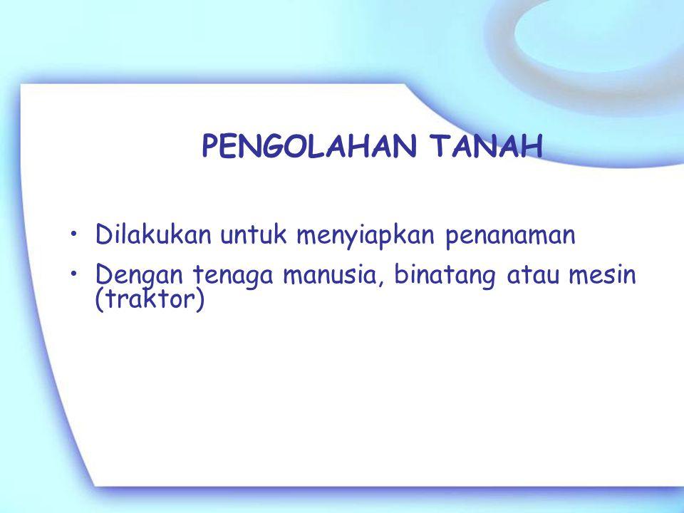 Pengolahan lahan (1)