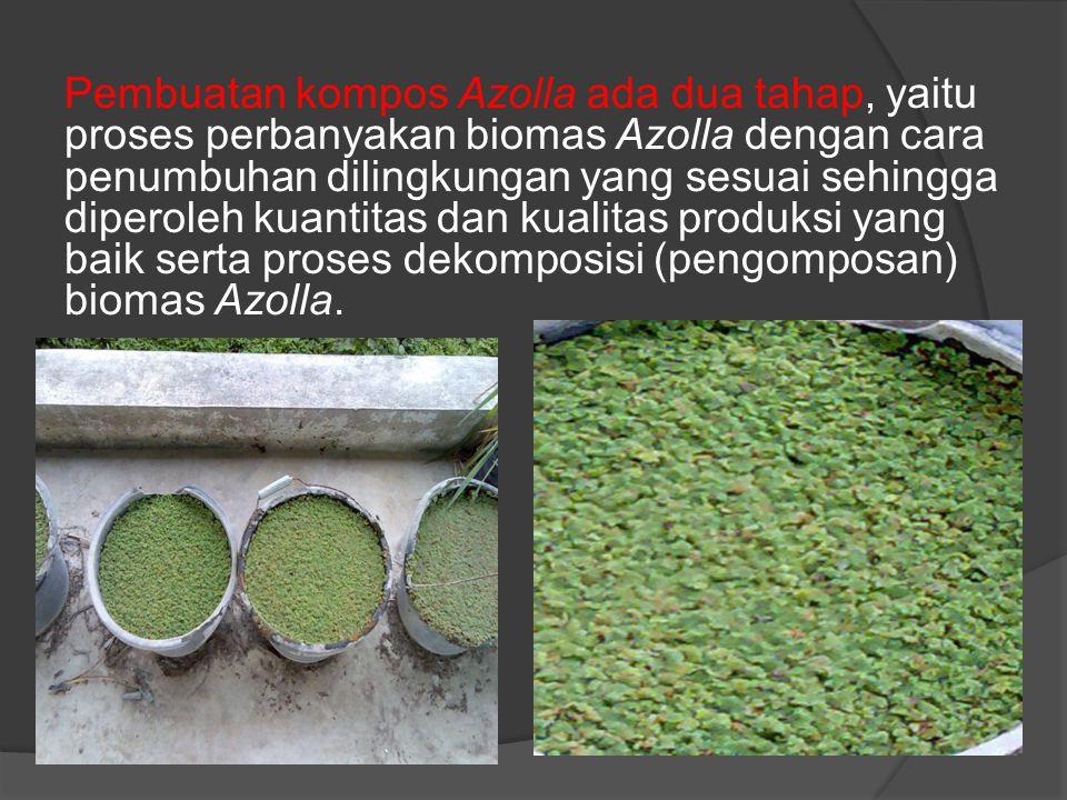 Pembuatan kompos Azolla ada dua tahap, yaitu proses perbanyakan biomas Azolla dengan cara penumbuhan dilingkungan yang sesuai sehingga diperoleh kuant