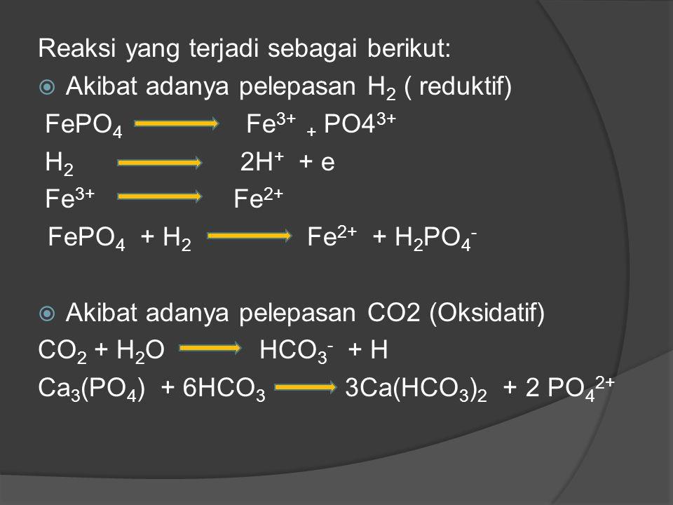 Reaksi yang terjadi sebagai berikut:  Akibat adanya pelepasan H 2 ( reduktif) FePO 4 Fe 3+ + PO4 3+ H 2 2H + + e Fe 3+ Fe 2+ FePO 4 + H 2 Fe 2+ + H 2 PO 4 -  Akibat adanya pelepasan CO2 (Oksidatif) CO 2 + H 2 O HCO 3 - + H Ca 3 (PO 4 ) + 6HCO 3 3Ca(HCO 3 ) 2 + 2 PO 4 2+