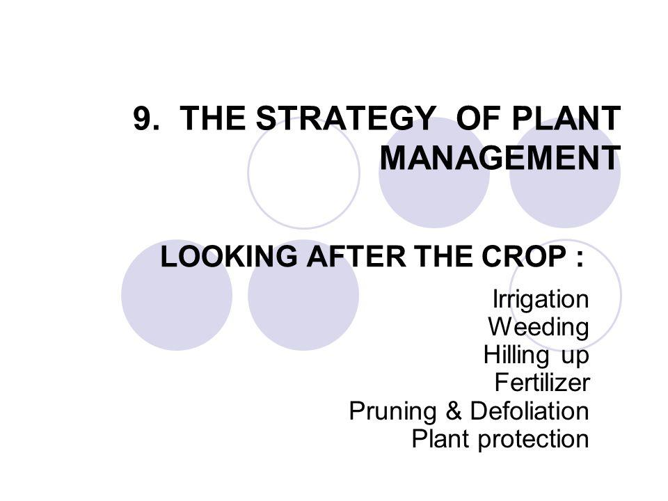 Pertumbuhan dan Pola Pertumbuham Pertumbuhan : suatu proses kehidupan tanaman pada habitat tan tsb.