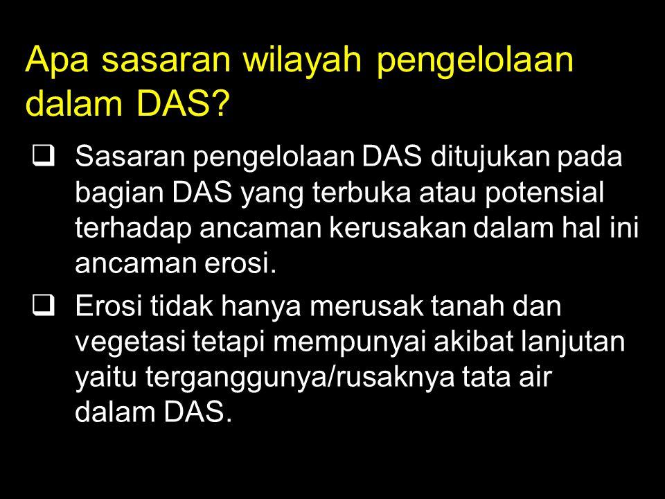Apa sasaran wilayah pengelolaan dalam DAS.