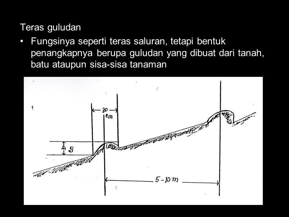 Teras guludan Fungsinya seperti teras saluran, tetapi bentuk penangkapnya berupa guludan yang dibuat dari tanah, batu ataupun sisa-sisa tanaman