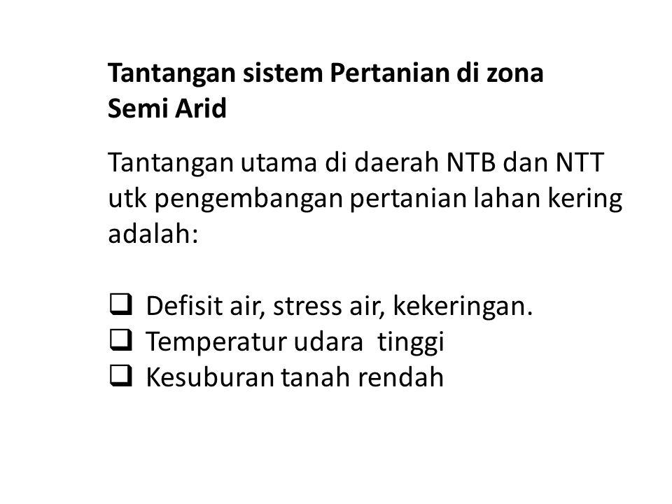 Tantangan sistem Pertanian di zona Semi Arid Tantangan utama di daerah NTB dan NTT utk pengembangan pertanian lahan kering adalah:  Defisit air, stre