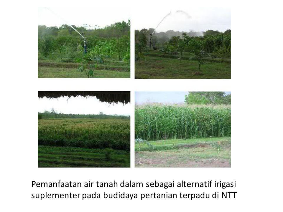 Pemanfaatan air tanah dalam sebagai alternatif irigasi suplementer pada budidaya pertanian terpadu di NTT