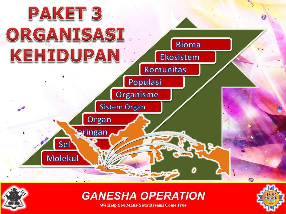 GANESHA OPERATION We Help You Make Your Dreams Come True