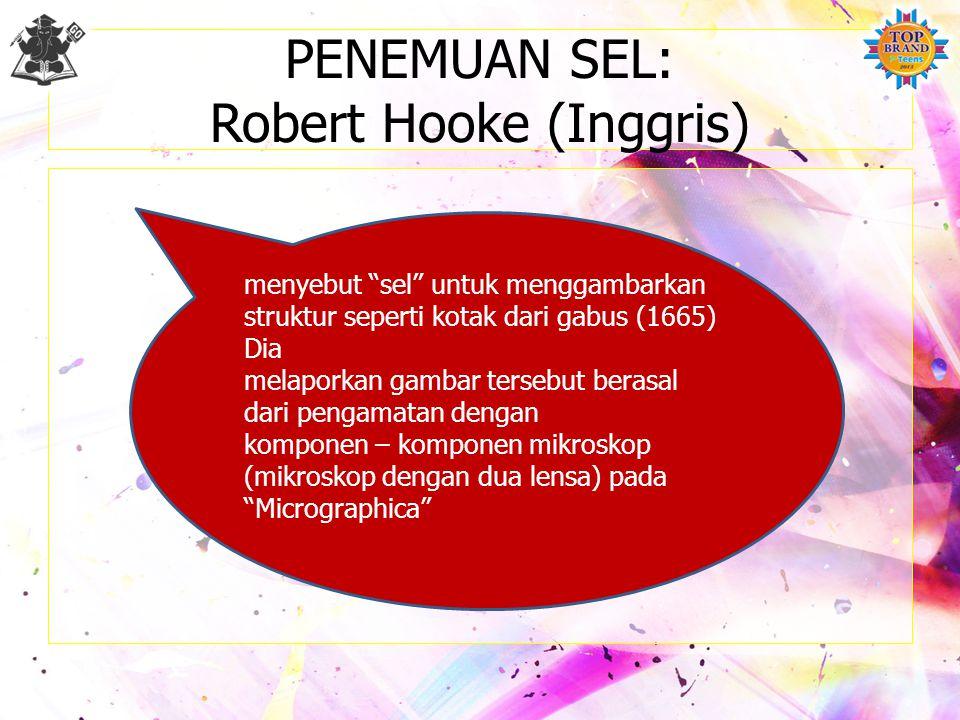 PENEMUAN SEL: Robert Hooke (Inggris) menyebut sel untuk menggambarkan struktur seperti kotak dari gabus (1665) Dia melaporkan gambar tersebut berasal dari pengamatan dengan komponen – komponen mikroskop (mikroskop dengan dua lensa) pada Micrographica