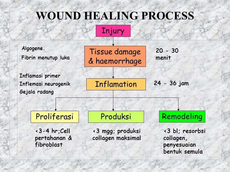 WOUND HEALING PROCESS Injury Tissue damage & haemorrhage Inflamation ProliferasiProduksi Remodeling 24 - 36 jam 20 - 30 menit <3-4 hr;Cell pertahanan