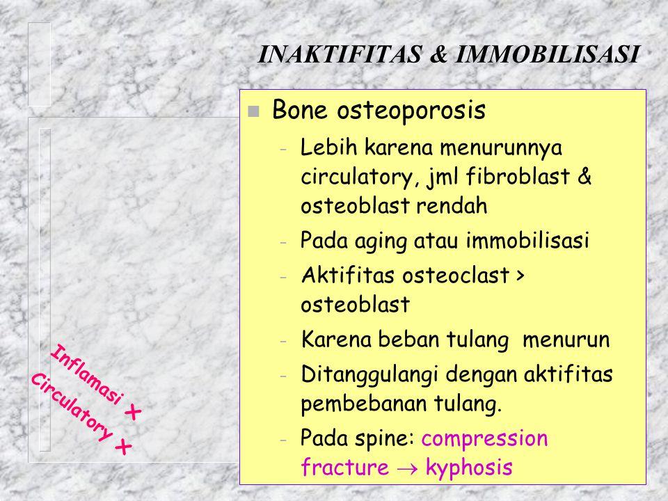 INAKTIFITAS & IMMOBILISASI n Bone osteoporosis – Lebih karena menurunnya circulatory, jml fibroblast & osteoblast rendah – Pada aging atau immobilisas