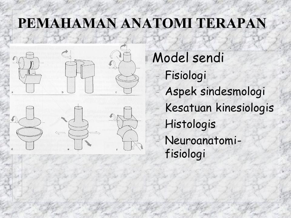 PEMAHAMAN ANATOMI TERAPAN n Model sendi – Fisiologi – Aspek sindesmologi – Kesatuan kinesiologis – Histologis – Neuroanatomi- fisiologi