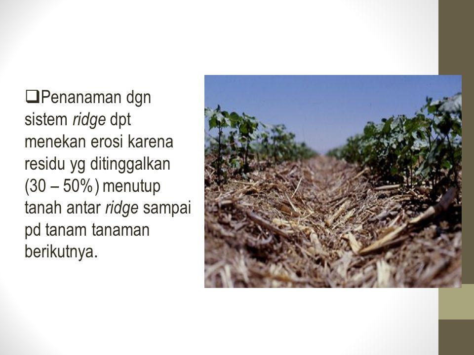 Penanaman dgn sistem ridge dpt menekan erosi karena residu yg ditinggalkan (30 – 50%) menutup tanah antar ridge sampai pd tanam tanaman berikutnya.