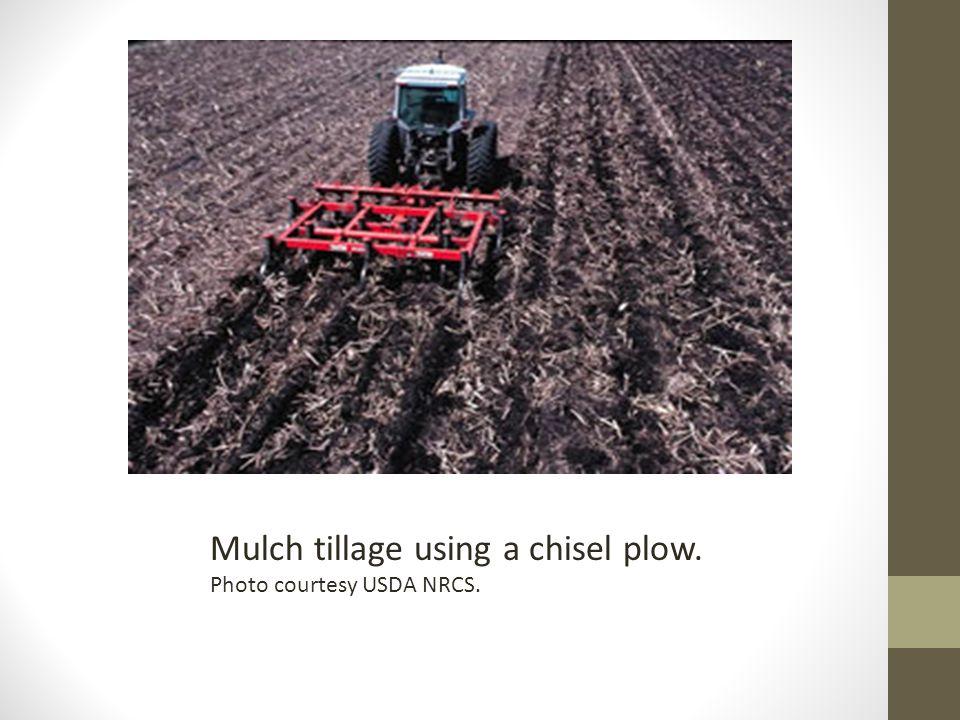 Mulch tillage using a chisel plow. Photo courtesy USDA NRCS.