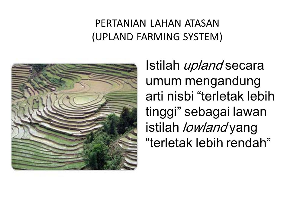 "PERTANIAN LAHAN ATASAN (UPLAND FARMING SYSTEM) Istilah upland secara umum mengandung arti nisbi ""terletak lebih tinggi"" sebagai lawan istilah lowland"