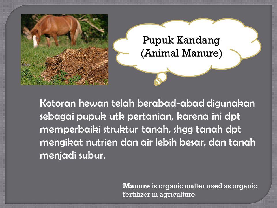 Kotoran hewan telah berabad-abad digunakan sebagai pupuk utk pertanian, karena ini dpt memperbaiki struktur tanah, shgg tanah dpt mengikat nutrien dan air lebih besar, dan tanah menjadi subur.