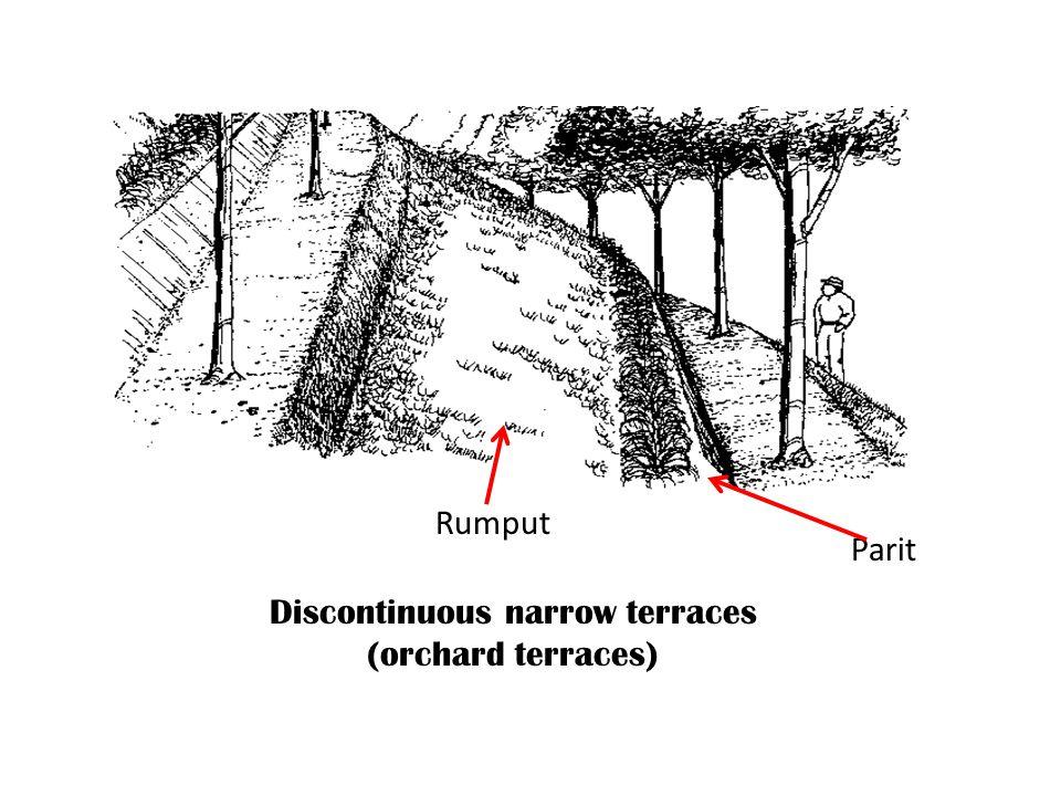 Discontinuous narrow terraces (orchard terraces) Parit Rumput