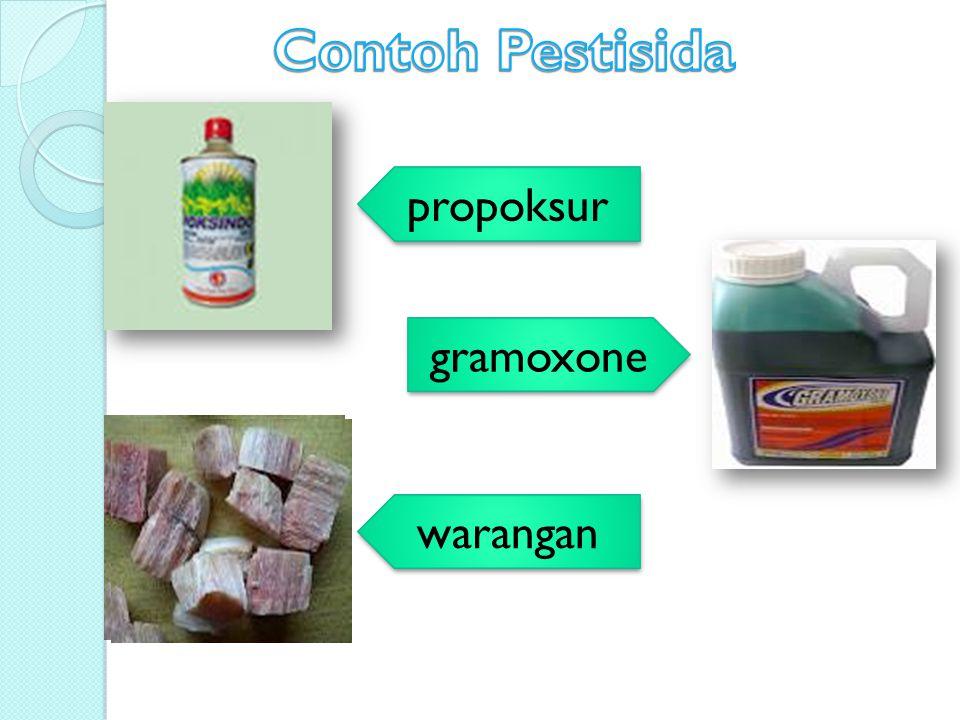 propoksur gramoxone warangan