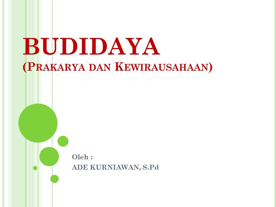 BUDIDAYA (P RAKARYA DAN K EWIRAUSAHAAN ) Oleh : ADE KURNIAWAN, S.Pd