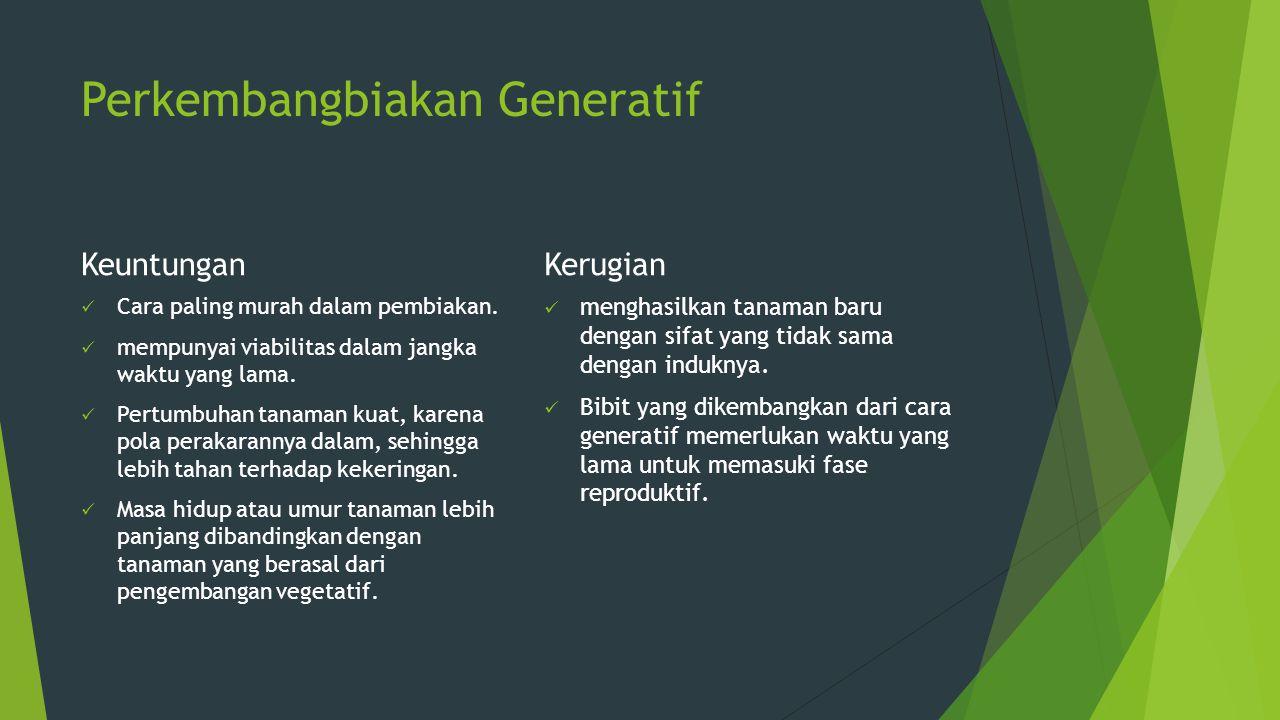 4. Pelaksanaan Sertifikasi  Pemeriksaan Lapangan  Pengujian Laboratorium  Pelabelan