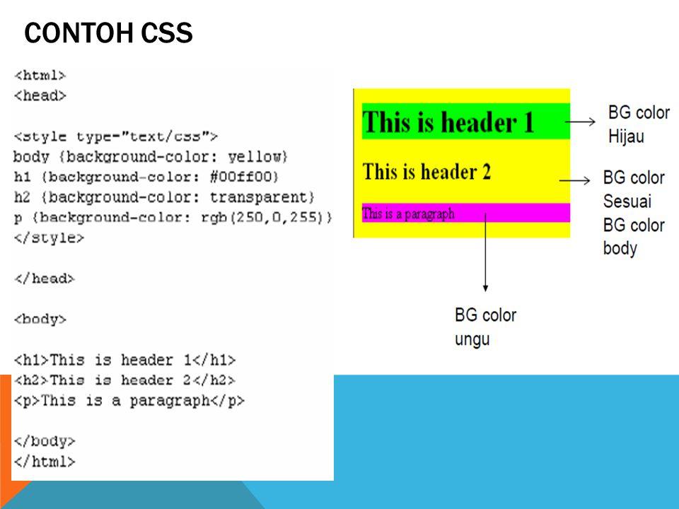 CONTOH CSS