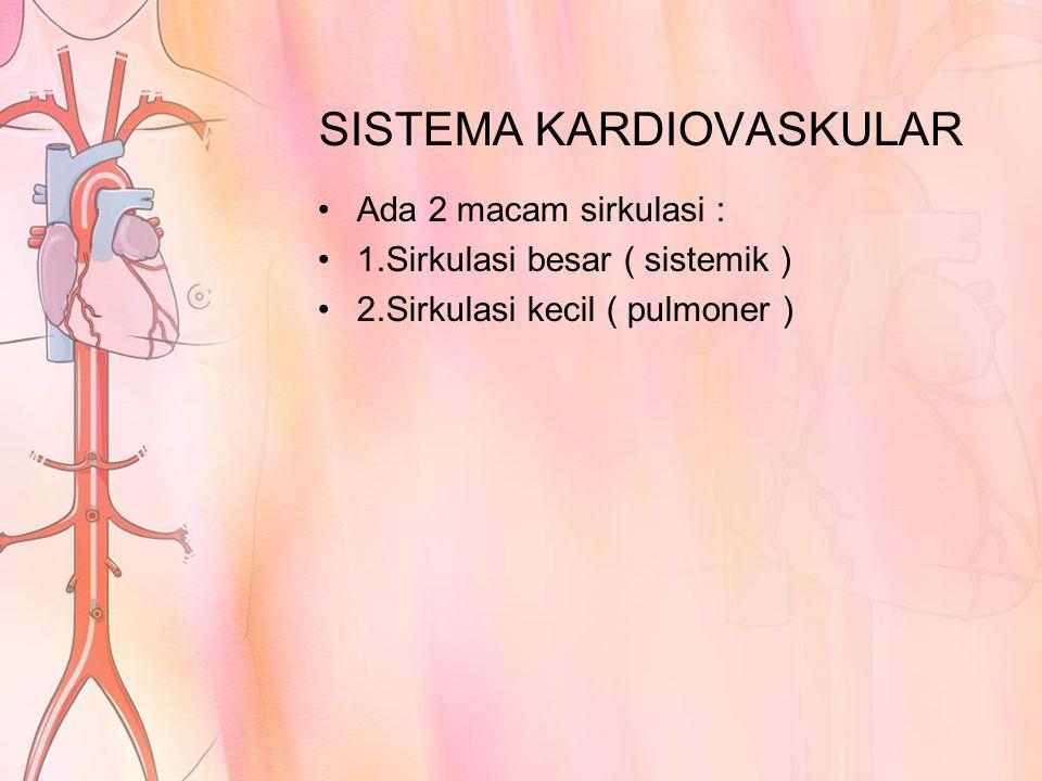 SISTEMA KARDIOVASKULAR Ada 2 macam sirkulasi : 1.Sirkulasi besar ( sistemik ) 2.Sirkulasi kecil ( pulmoner )