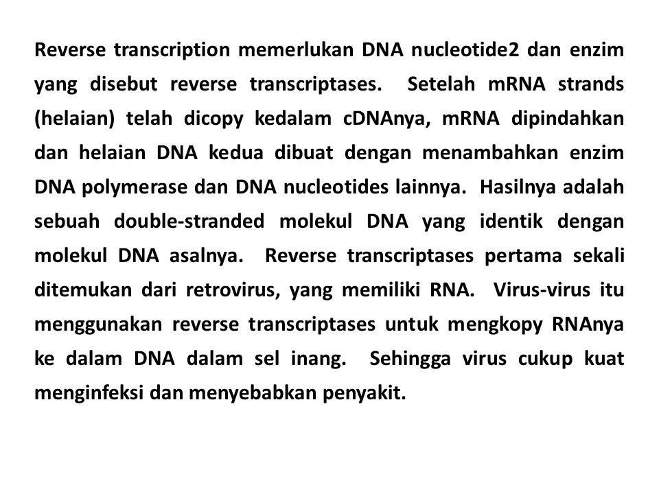 Reverse transcription memerlukan DNA nucleotide2 dan enzim yang disebut reverse transcriptases. Setelah mRNA strands (helaian) telah dicopy kedalam cD