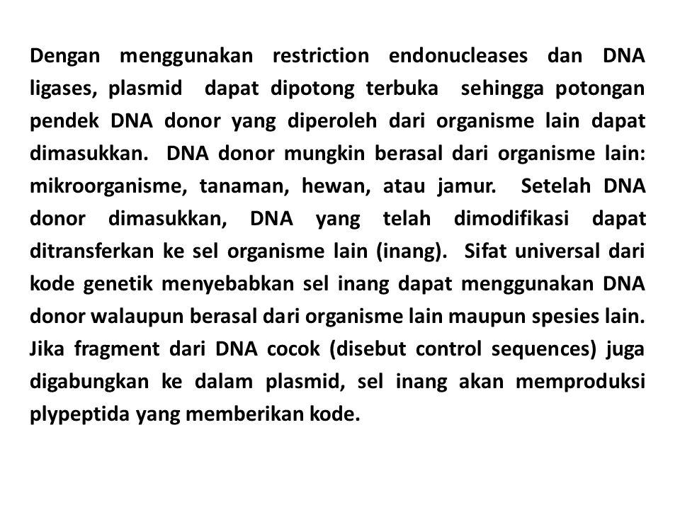 Dengan menggunakan restriction endonucleases dan DNA ligases, plasmid dapat dipotong terbuka sehingga potongan pendek DNA donor yang diperoleh dari or