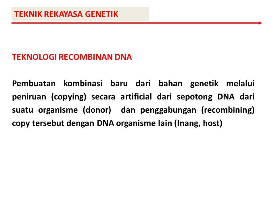 TEKNIK REKAYASA GENETIK TEKNOLOGI RECOMBINAN DNA Pembuatan kombinasi baru dari bahan genetik melalui peniruan (copying) secara artificial dari sepoton