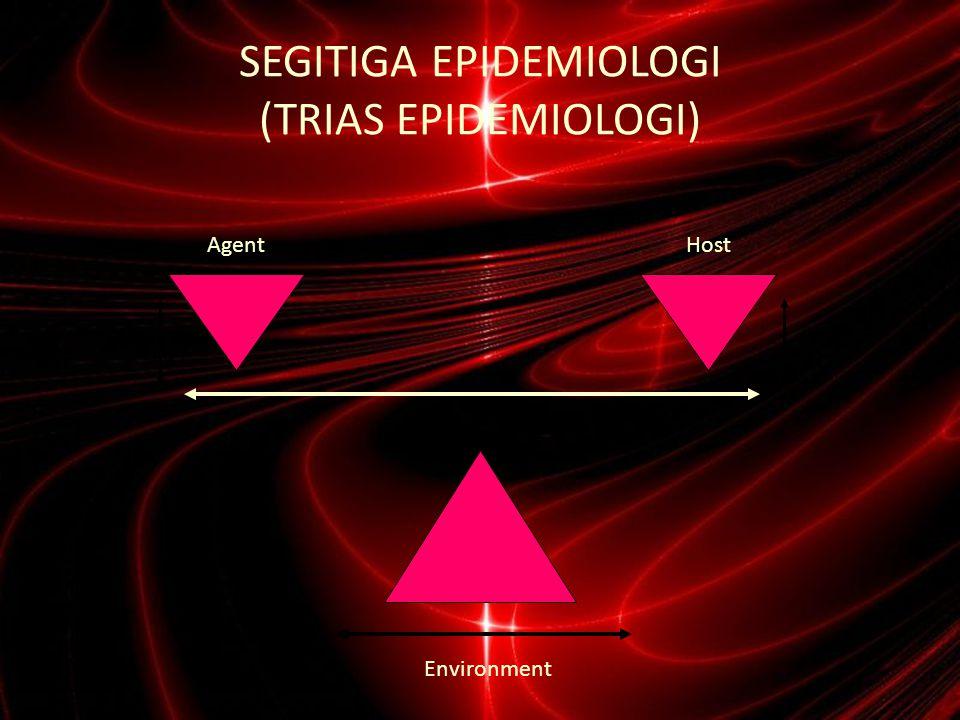 Hub.HOST-AGEN-ENVIRONMENT Model 1.