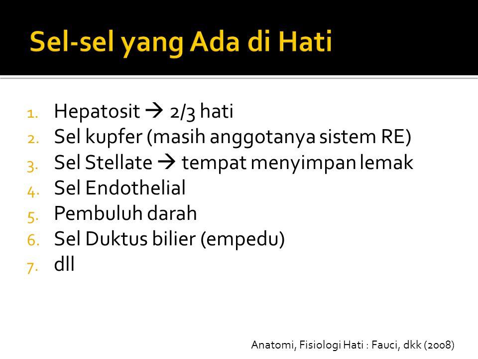 1. Hepatosit  2/3 hati 2. Sel kupfer (masih anggotanya sistem RE) 3. Sel Stellate  tempat menyimpan lemak 4. Sel Endothelial 5. Pembuluh darah 6. Se