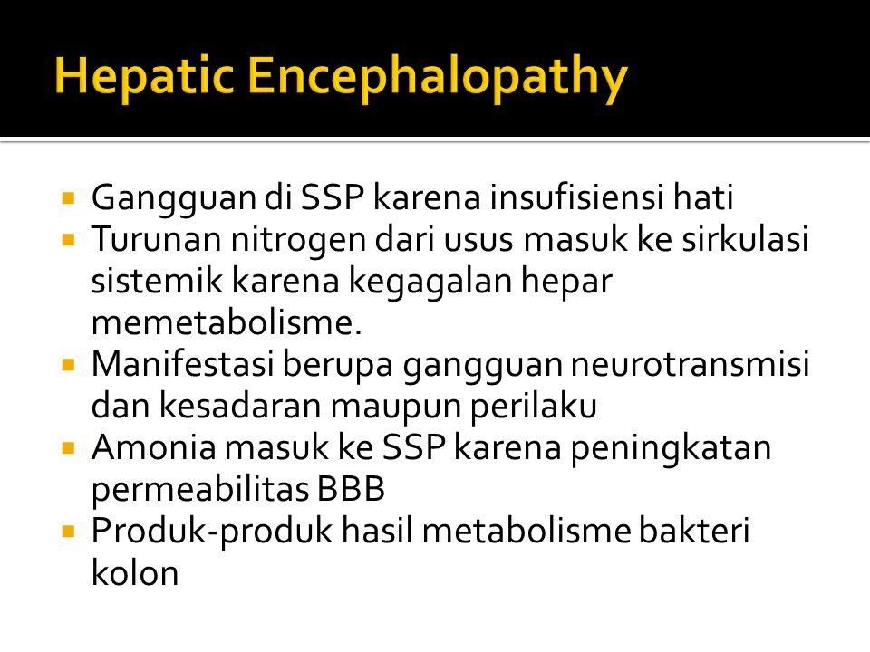  Gangguan di SSP karena insufisiensi hati  Turunan nitrogen dari usus masuk ke sirkulasi sistemik karena kegagalan hepar memetabolisme.  Manifestas