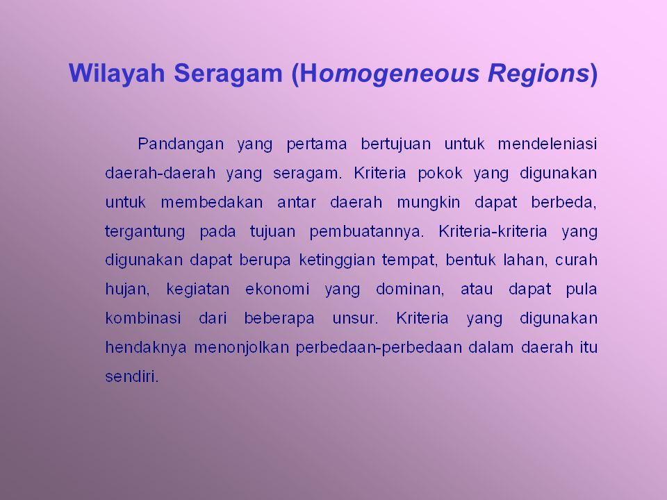 REGIONALISASI SEBAGAI DASAR DELINIASI RUANG Functional Regions WILAYAH PENDEKATAN GEOGRAFI REGIONALISASI Homogeneous Regions Planning Regions
