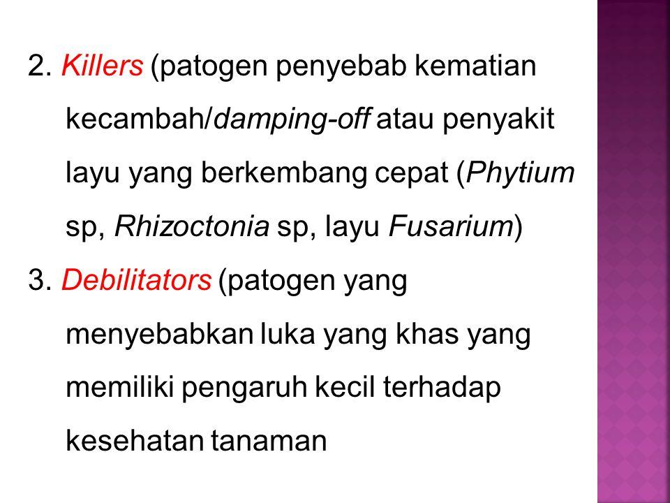 2. Killers (patogen penyebab kematian kecambah/damping-off atau penyakit layu yang berkembang cepat (Phytium sp, Rhizoctonia sp, layu Fusarium) 3. Deb
