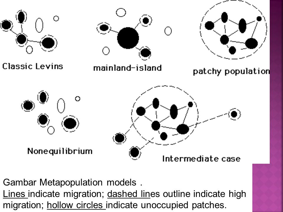 Gambar Metapopulation models. Lines indicate migration; dashed lines outline indicate high migration; hollow circles indicate unoccupied patches.