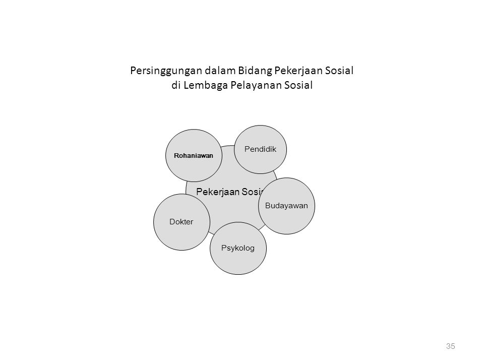 Persinggungan dalam Bidang Pekerjaan Sosial di Lembaga Pelayanan Sosial 35 Pekerjaan Sosial Psykolog Budayawan Dokter Rohaniawan Pendidik