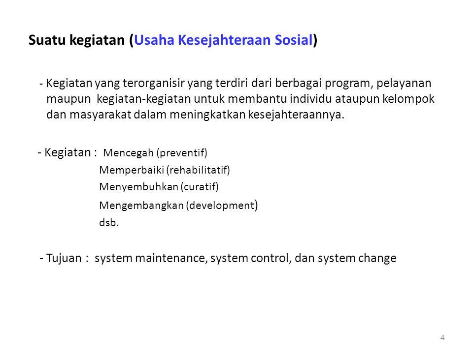 Suatu kegiatan (Usaha Kesejahteraan Sosial) - Kegiatan yang terorganisir yang terdiri dari berbagai program, pelayanan maupun kegiatan-kegiatan untuk