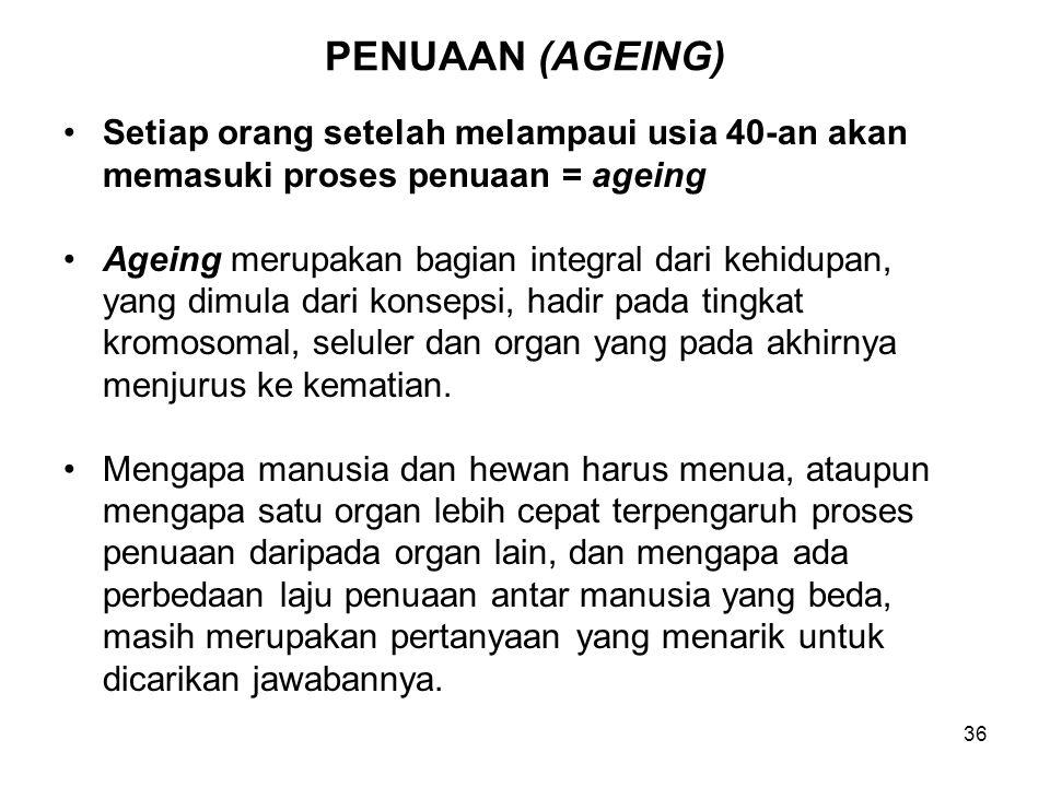 36 PENUAAN (AGEING) Setiap orang setelah melampaui usia 40-an akan memasuki proses penuaan = ageing Ageing merupakan bagian integral dari kehidupan, y