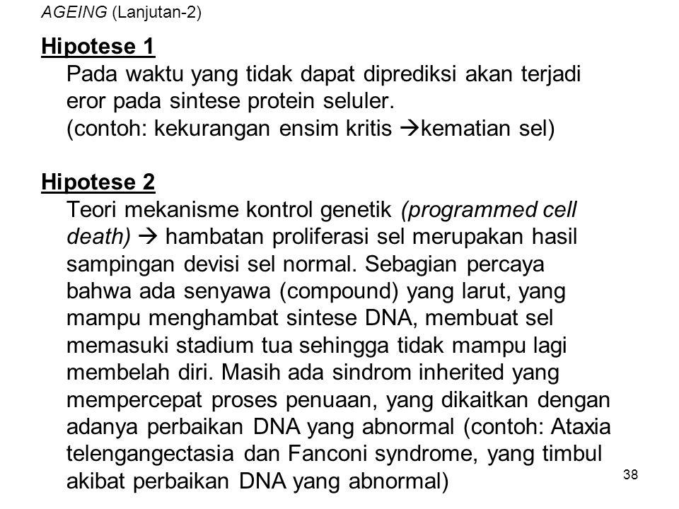38 AGEING (Lanjutan-2) Hipotese 1 Pada waktu yang tidak dapat diprediksi akan terjadi eror pada sintese protein seluler. (contoh: kekurangan ensim kri