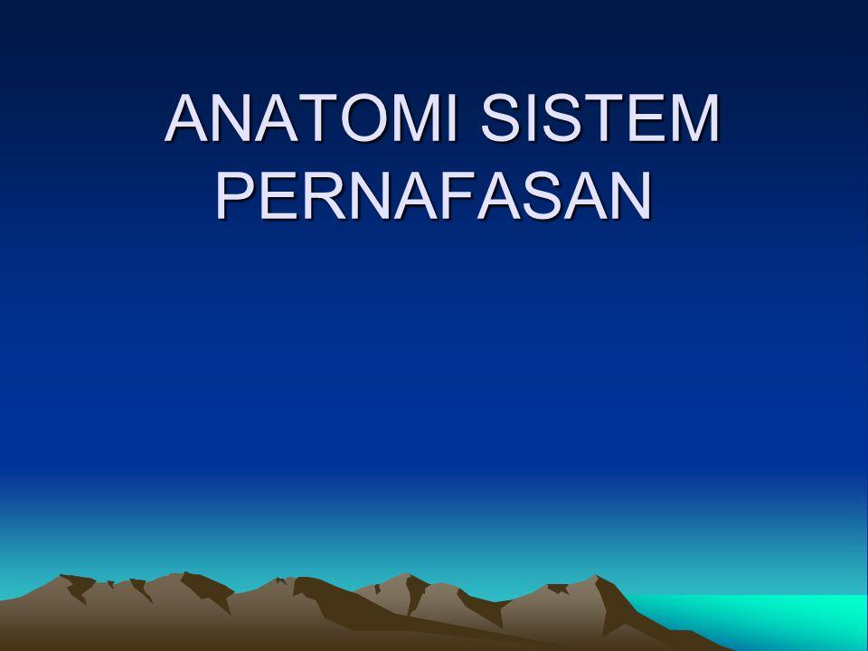 ANATOMI SISTEM RESPIRASI HIDUNG FARYNX / TEKAK LARINX TRAKEA,BRONKUS PARU
