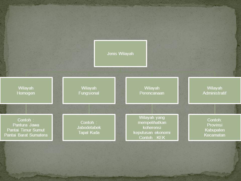 Jenis Wilayah Wilayah Homogen Contoh : Pantura Jawa Pantai Timur Sumut Pantai Barat Sumatera Wilayah Fungsional Contoh : Jabodetabek Tapal Kuda Wilaya