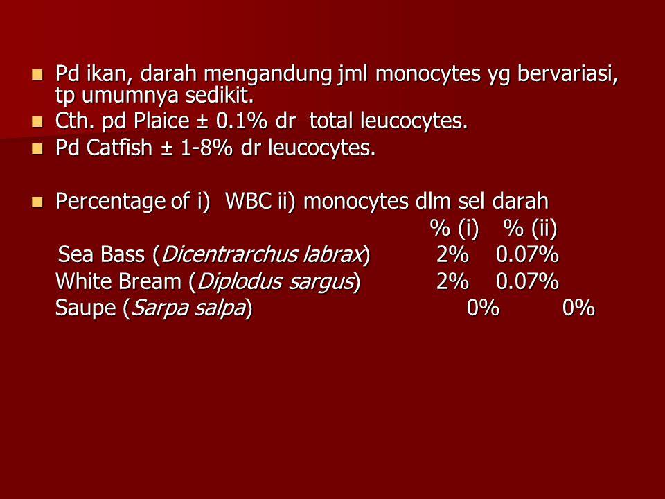 Pd ikan, darah mengandung jml monocytes yg bervariasi, tp umumnya sedikit. Pd ikan, darah mengandung jml monocytes yg bervariasi, tp umumnya sedikit.